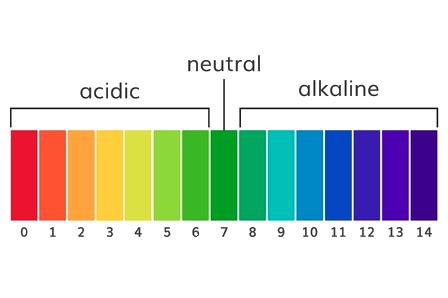 pH_Scale